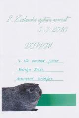 Merilyn_-_diplom_4.UK_crested_junior_-_2._zizkovska